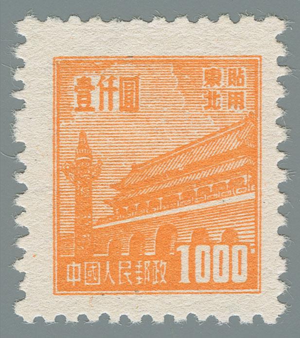 Yang NE163