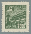 Yang NE165