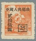 Yang SC48